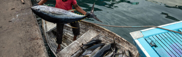Полный тунец и клубная вакцина. Как ЕС разоряет Сейшеллы и обижает Австралию