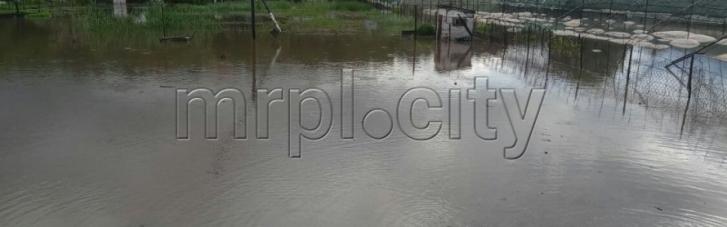 В Мариуполе из-за дождей затопило многоэтажки, огороды, повалило деревья (ФОТО, ВИДЕО)