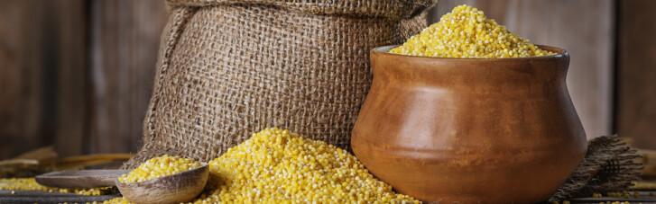 Величие просяного зерна. Что мы знаем о пшене и при чем здесь веники