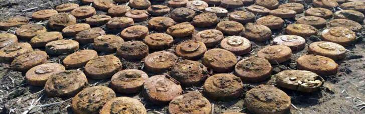 На Дніпропетровщині в полі знайшли майже 400 старих мін (ФОТО, ВІДЕО)