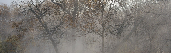 Погода в Україні: синоптики попереджають про небезпечні метеоролічні явища (КАРТА)