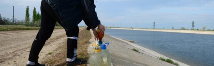 Вода в Крым, куры и Паниковский. Зачем Зе-команда косит под дурачков