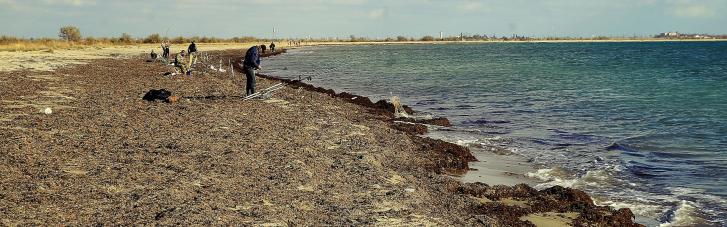 Санлікарі просять не купатися на деяких пляжах Бердянська і лякають епідеміями
