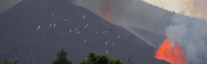 Испания объявила один из Канарских островов зоной бедствия