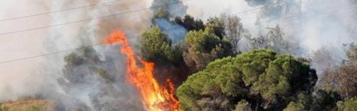 Пожар в Каталонии уничтожил 400 га природного парка (ФОТО)