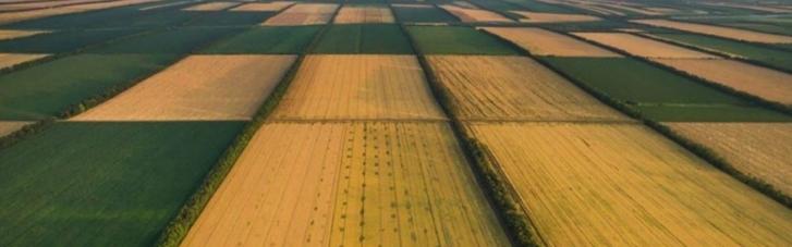 У Кабміні назвали ціну землі після відкриття ринку