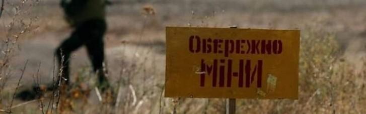 День на Донбассе: украинские пиротехники разминировали 5 га территории
