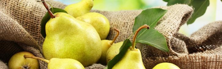 """Время груш. Почему популярный фрукт угодил """"в панацеи"""" и кто такие перри с пуаре"""