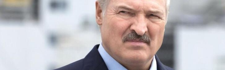 Лукашенко напрягся. Почему в Беларуси стали задерживать русских троллих, набедокуривших в США