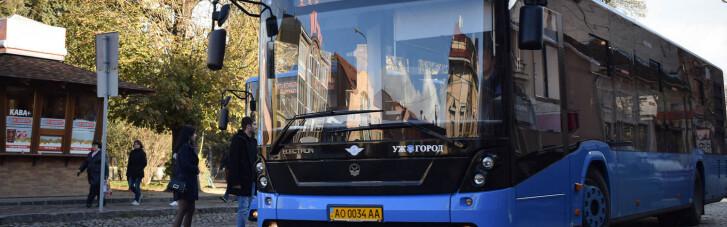 В Ужгороде ослабили карантин: снова запускают городской транспорт