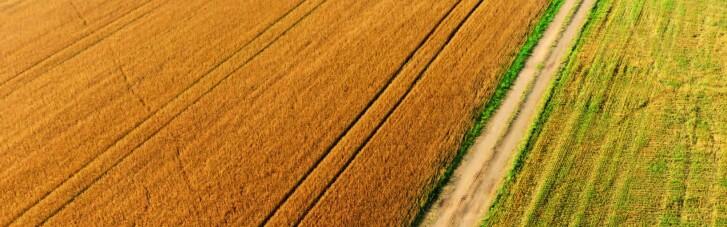 Купить землю хочет каждый четвертый украинец, — опрос