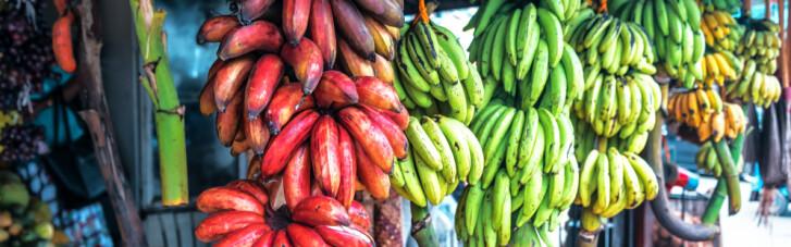 Десерт с кожурой. Как бананы приобрели современный вид и откуда взялись порочащие их слухи