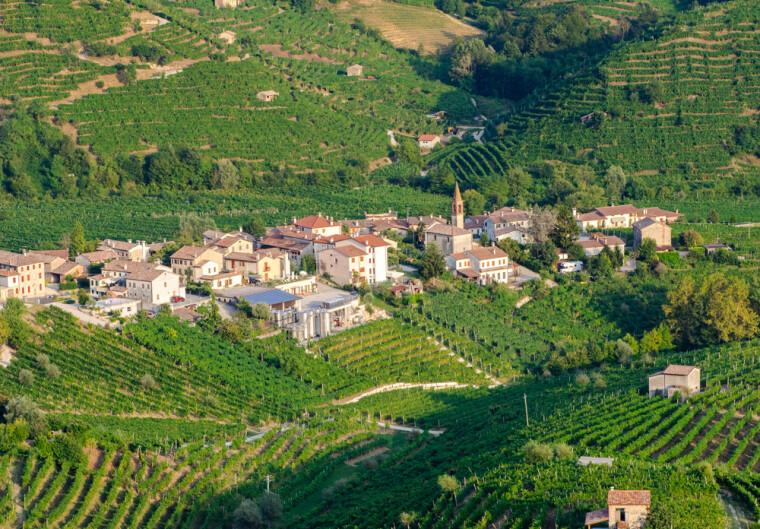 Пагорб Картіцце і його околиці