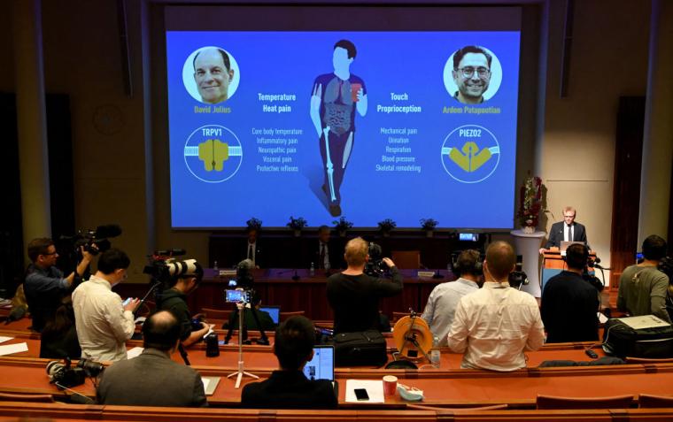 Американські вчені Девід Джуліус (на екрані зліва) і Ардем Патапутян (на екрані справа) отримали Нобелівську премію з медицини