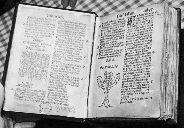 Одна из страниц знаменитой и многократно переиздававшейся книги Стефана Фалимижа