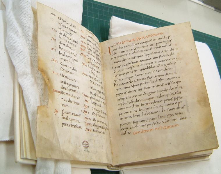 Розворот однієї з рукописних копій De re coquinaria, IX–X ст., абатство Фульда (з 774 по 1802 рр. — Імперське абатство Святого Боніфація), Німеччина/Wikipedia