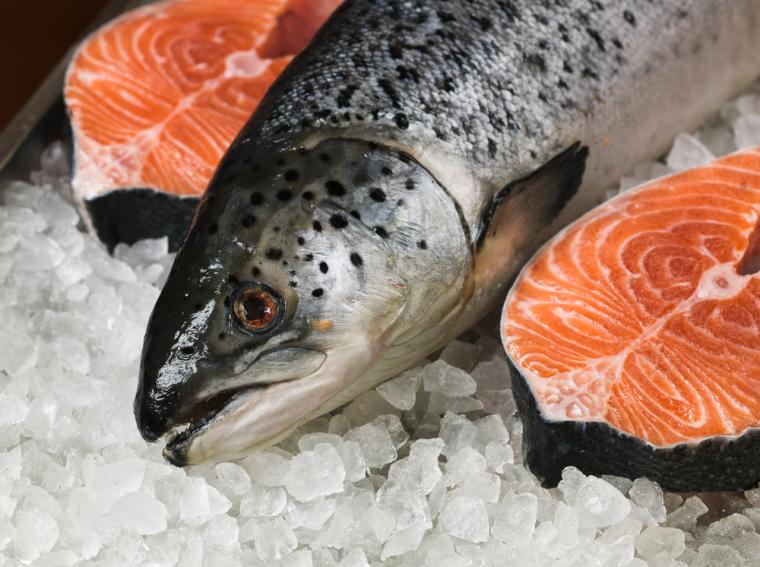 Вкуснейшее лососевое мясо пользовалось популярностью еще в древности