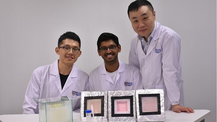 Дослідники з Сінгапуру збираються посилити поглинаючу здатність гідрогелю та оптимізувати процес збору води, щоб опріснювати до 1000 л у день/National University of Singapore