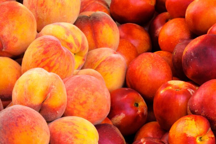 В некоторых случаях сходство плодов нектарина и персика бывает так велико, что первые выглядят точь-в-точь как отполированные образцы вторых