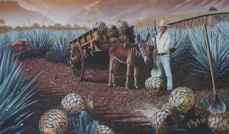 «Сборщик голубой агавы». Фреска на заводе Хосе Куэрво в Текиле, штат Халиско, Мексика / Jay Galvin/Flickr