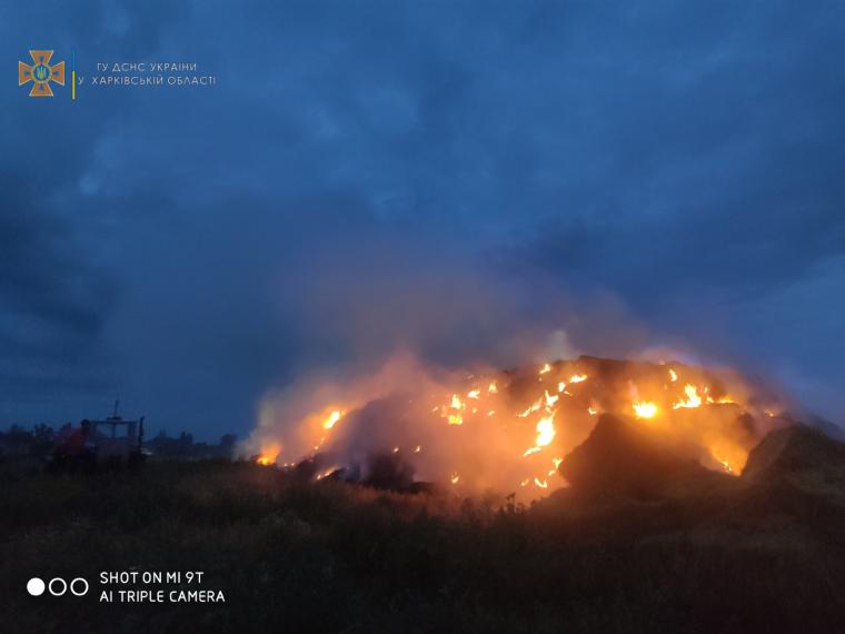 Площадь пожара составила 500 кв. м