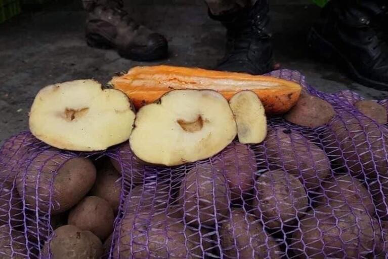Майже сотню скарг від військових на якість гнилого харчування в Міноборони не вважають системним порушенням