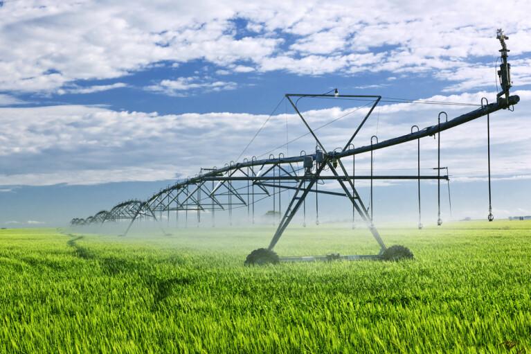 Открыть Африку и дать воду. Как Украине вывести агросектор на новый уровень