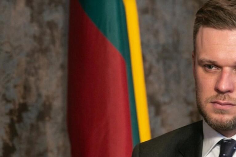 Поддержка Лукашенко стоит Путину гораздо дороже, чем война на Донбассе, — МИД Литвы