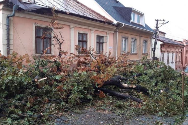 В Черновцах непогода затопила улицы и повалила деревья (ФОТО, ВИДЕО)