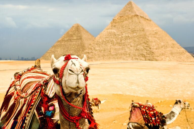 Украина в 2020 году заняла первое место по количеству туристов в Египте
