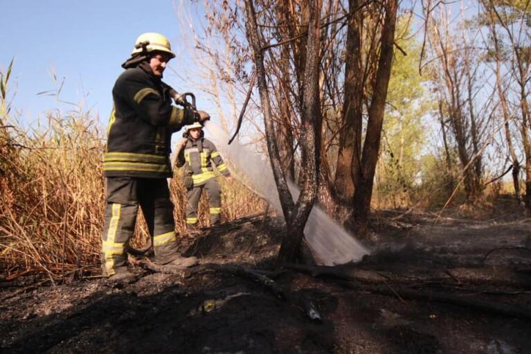 Пожар на свалке в Киеве: площадь возгорания значительно увеличилась (ФОТО)