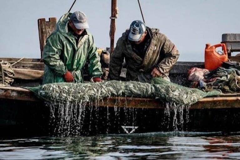 ФСБ затримала українських рибалок за 70 км від окупованого Криму
