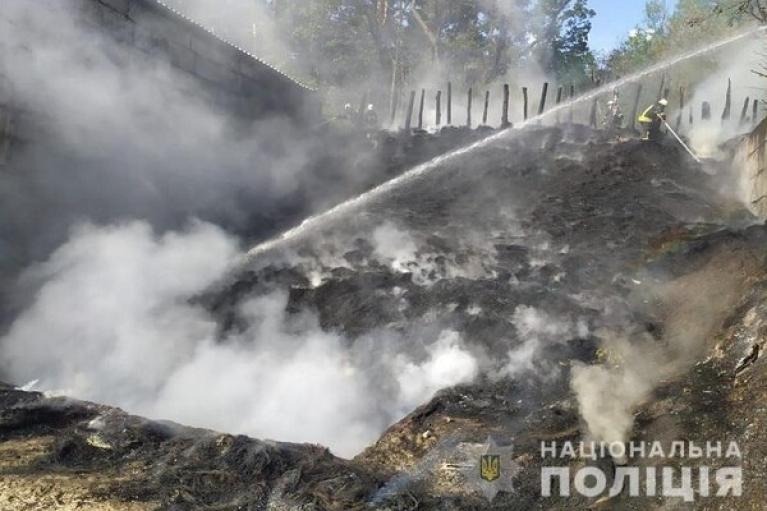 Тренировка полицейских в Киеве закончилась пожаром (ВИДЕО)