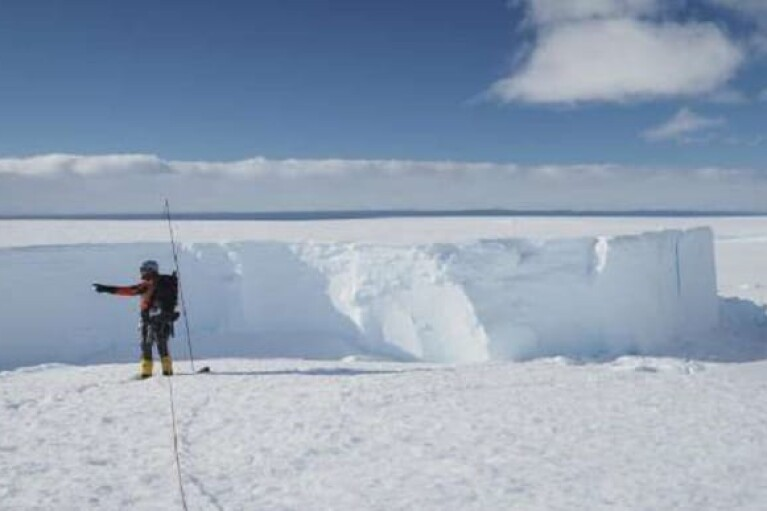 От Антарктиды откололся айсберг, площадью большей Киева (ФОТО)