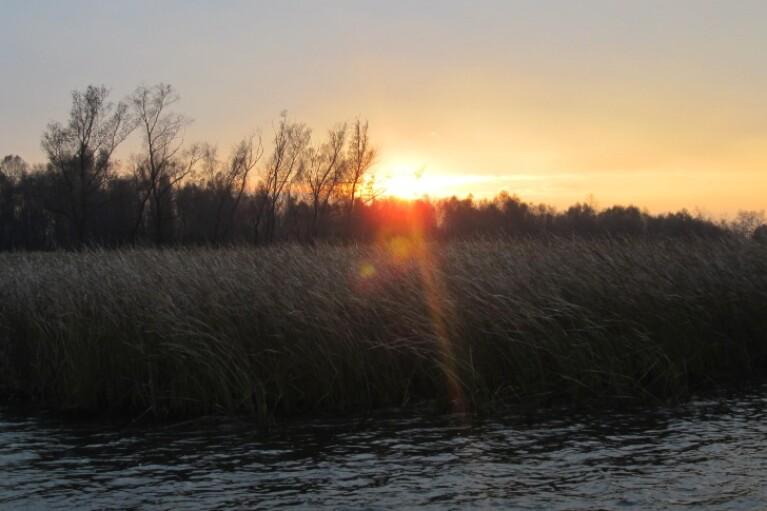 Неделя в Украине начнется с заморозков - прогноз погоды