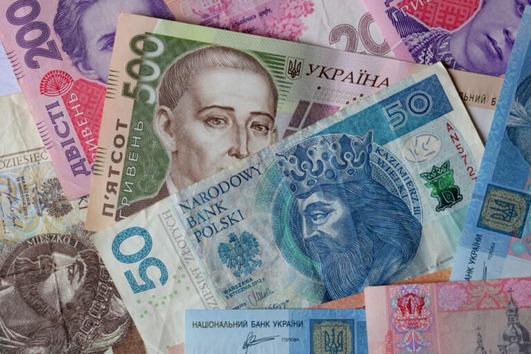 """Онлайн-конференція """"ДС"""": Чому від податків поляки гладшають, а українці худнуть? (ВІДЕО)"""