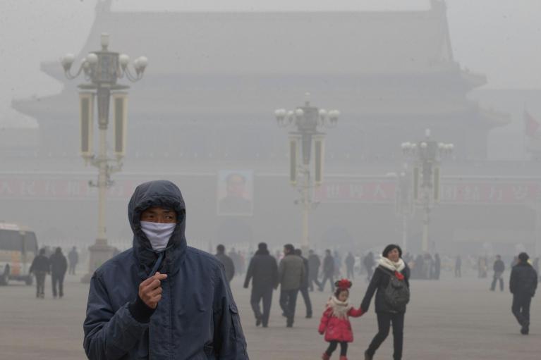 В Китае зафиксировали новый штамм птичьего гриппа с высокой летальностью