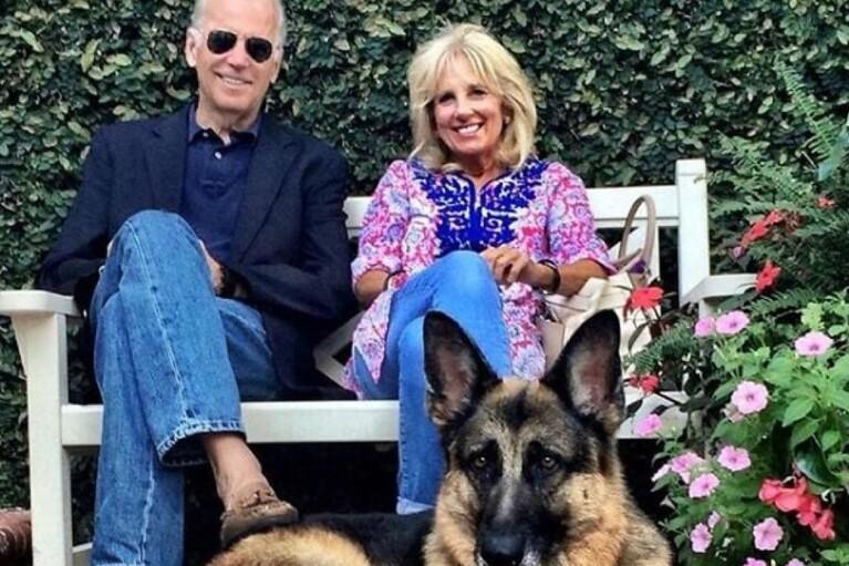 CNN: собак Байдена виселили з Білого дому через агресивну поведінку