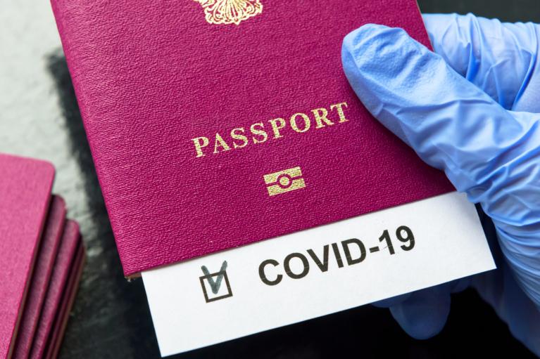 """COVID-паспорт в ЕС: ковид-диссидент от """"Слуг"""" рассказал ПАСЕ о нарушении прав"""