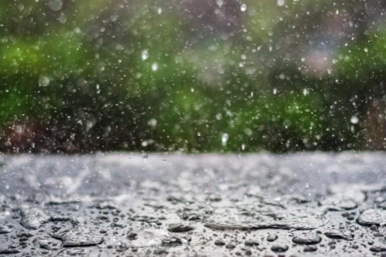 Дощі і до +16: прогноз погоди на суботу (КАРТА)
