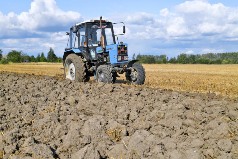 Новый передел. Как в Украине раздадут землю бывшим работникам совхозов