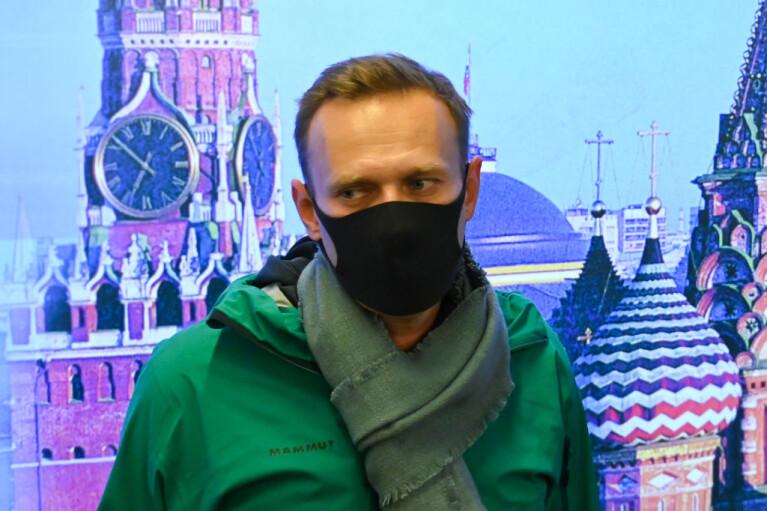 Узник без совести. Кто заказал сеанс жабогадюкинга с участием Навального