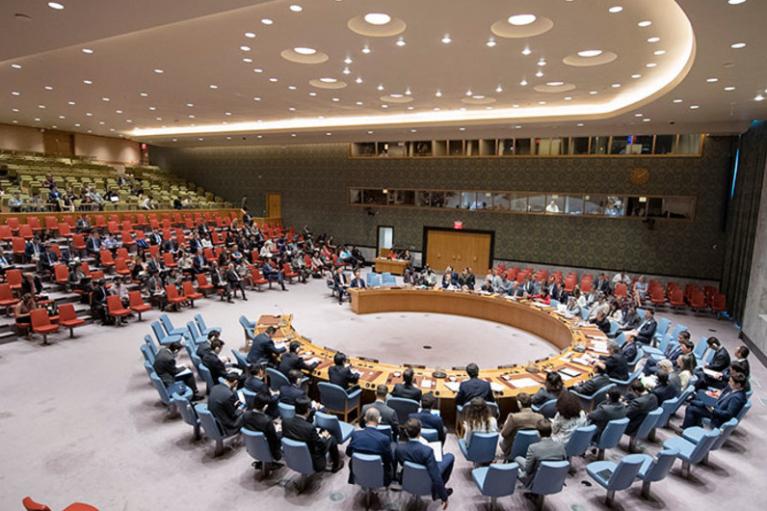 Совбез ООН не поддержал предложение РФ по Боснии и Герцеговине