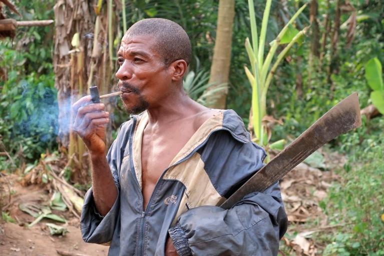 У Конго виявили плем'я пігмеїв-алкоголіків: віддають перевагу самогону