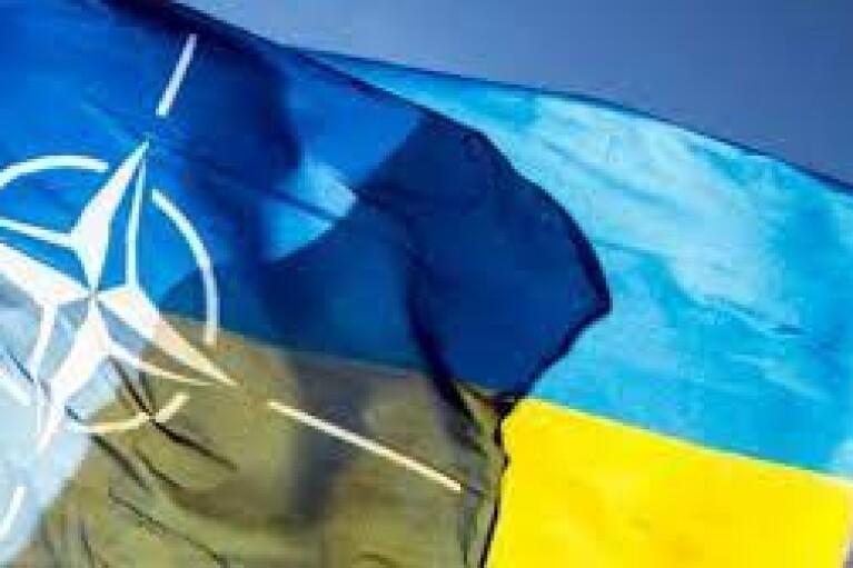 Украина рассчитывает получить ПДЧ в НАТО в этом году, — Таран
