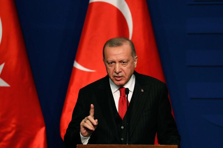 Эрдоган сообщил о поимке подозреваемого в поджоге лесов в Турции