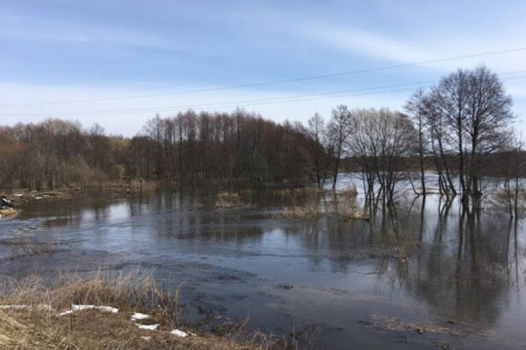 На западе Украины повышается уровень воды в реках: возможные подтопления