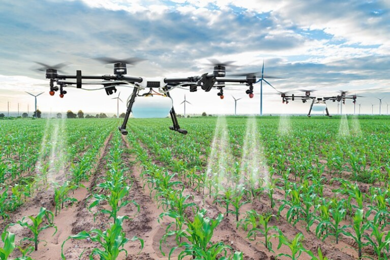 Расплатиться урожаем. Как устроен украинский рынок средств защиты растений