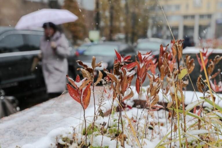 Дощ і мокрий сніг - прогноз погоди на п'ятницю (КАРТА)
