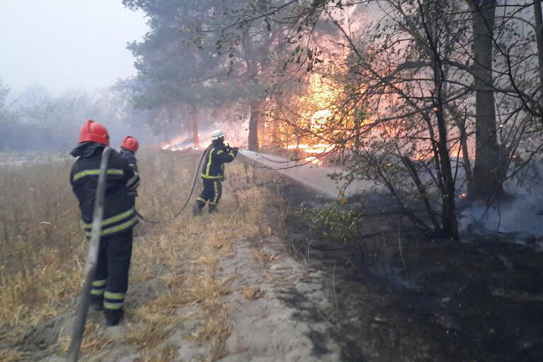 Пожежі на Луганщині. Причини і чим займається влада